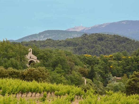 vakantie huis vlakbij de Mont Ventoux