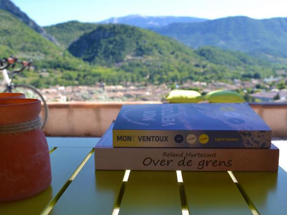 groot Provençaals vakantiehuis huren met zicht op de Mont Ventoux