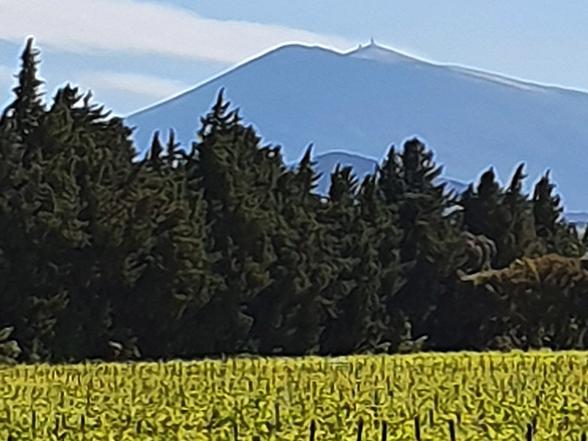 huisje huren voor 4 personen voor vakantie in de Provence, tussen de wijngaarden, met privé zwembad