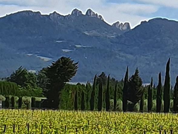 huis huren voor 4 personen tussen de wijngaarden met zwembad, airco en zicht op de Mont Ventoux