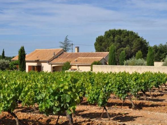 villa tussen de wijngaarden Mont Ventoux