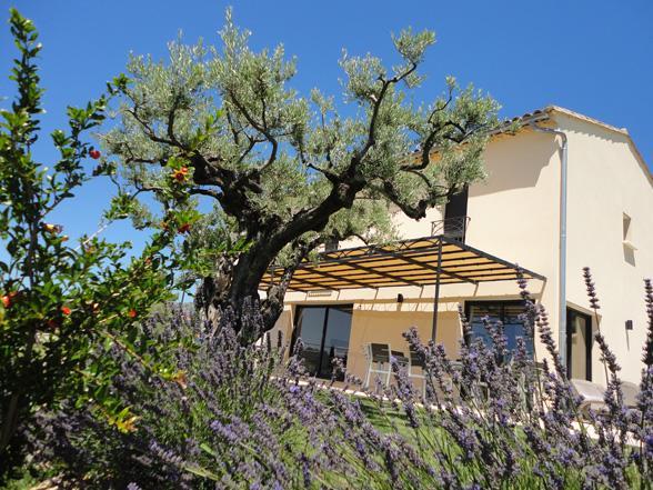 luxe villa voor 8 personen in Bédoin