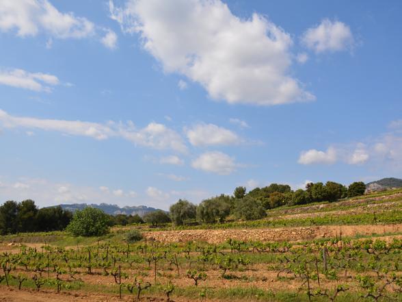 vakantie Provence villa huren voor 10 personen met airco en verwarmd zwembad aan de Ventoux met privé zwembad