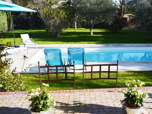 zwembad met ligbedden en parasols tussen de olijfbomen