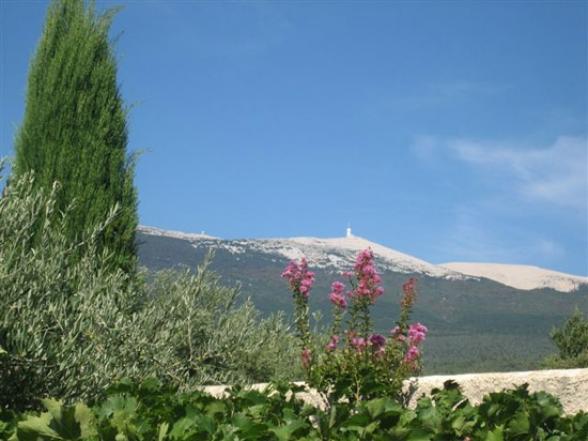zicht op de Mont Ventoux vanuit villa Bédoin