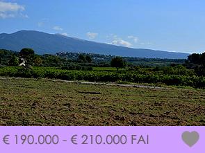 bouwgrond kopen in de Provence tussen de wijngaarden met zicht op de Mont Ventoux
