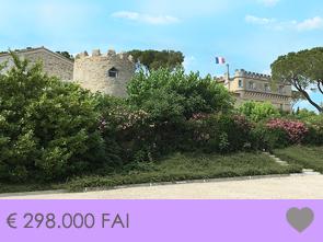 huis kopen op kasteeldomein met groot gemeenschappelijk zwembad, vastgoed Provence, Mont Ventoux, investeringsproject, vakantie verhuur