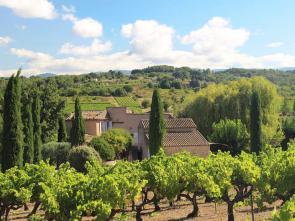 vakantiewoning tussen de wijngaarden van Goult huren in de Luberon, Provence