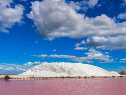 vakantiehuis provence huur salin de camargue sel zoutwiningen zoutpannen flamingo's